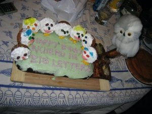cakewreck owl cake
