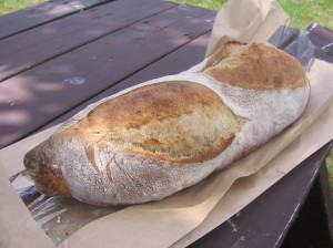 Batard de Charlevoix sourdough