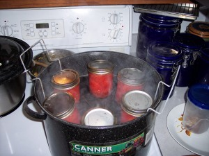 Canned tomatoes in the canner